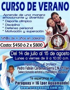 Curso de verano en OP Taekwondo