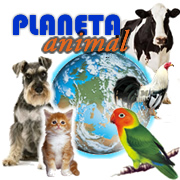 VETERINARIA PLANETA ANIMAL